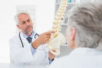 doctor pointing out to a patient specific bones on a skeletal model of the spine